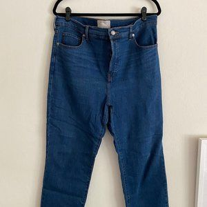 Everlane High Rise Slim Straight Jean in Mid Blue